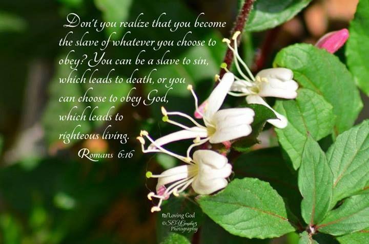 Romans 6:16 | Spiritual Practice | Pinterest