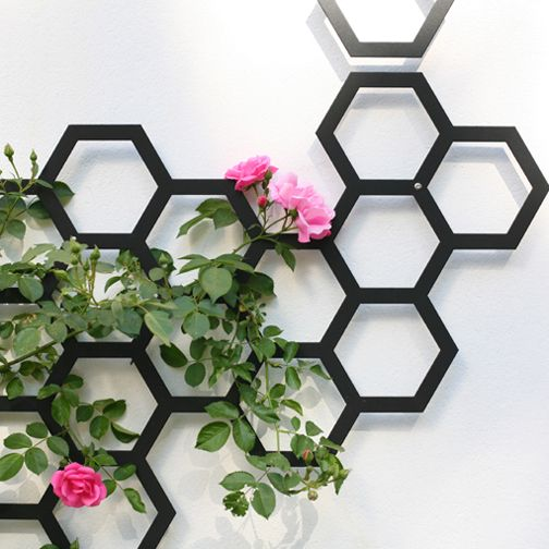combination trellis by arik levy
