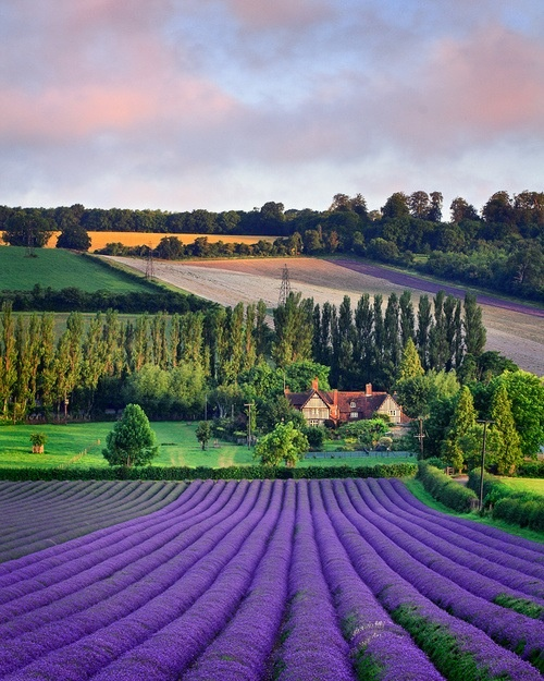 Travel to beautiful countryside #McCainAllGood. English Language Review: http://rdd.me/yw6rmyfm