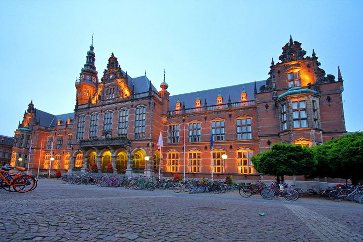 Eric Bleumink Scholarships, beasiswa S2 di University of Groningen