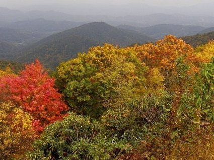 North Carolina mountains. Check out Brigette's review of Jeanne DuPrau's The Prophet Of Yonwood here: http://chaptersandscenes.wordpress.com/2014/02/20/brigette-reviews-the-prophet-of-yonwood/