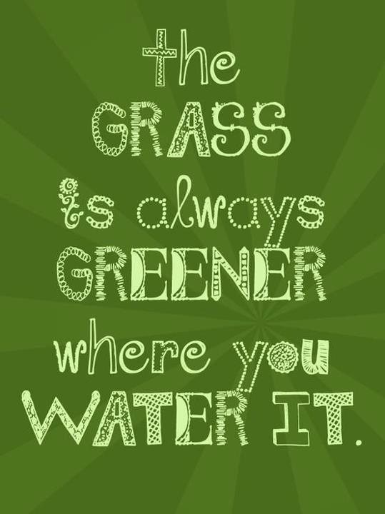 The Grass Is Greener... Where u water it dang it !! Keep it green