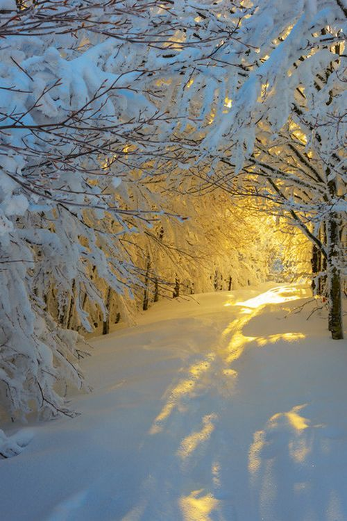 Snow Sunrise, Italy photo via cathy