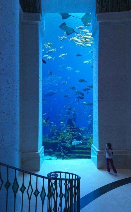 Hotel sottomarino a Dubai (Atlantis, The Palm)