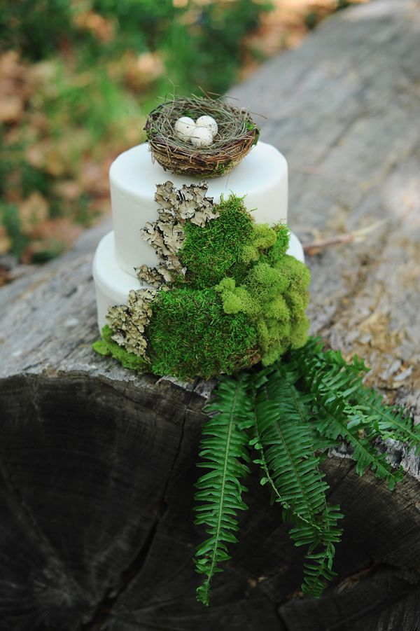 forest wedding cake, photo by Arina B Photography http://ruffledblog.com/greenery-filled-wedding-ideas #weddingcake #cakes