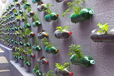 Brazilian design studio Rosenbaum created this hanging garden of recycled plastic bottles to help an underprivileged family with limited space in Sao Paulo live more sustainably. The old bottles were strung together and planted with flowers, spices and medicinal herbs.