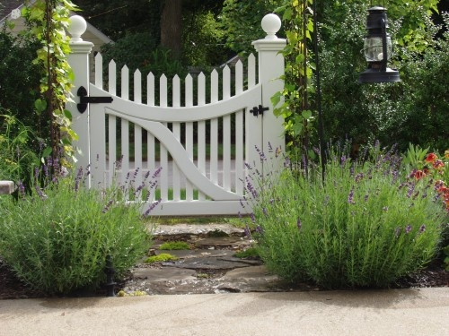 Remember to plant a few big bushy lavenders in front of the new gate posts - the rose can clamber up right by the LHS post.... do it ASAP...