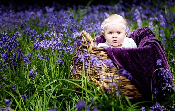 ... Photographer Surrey} <b>bluebell</b> portraits <b>baby</b> caterpillar <b>woods</b> spring