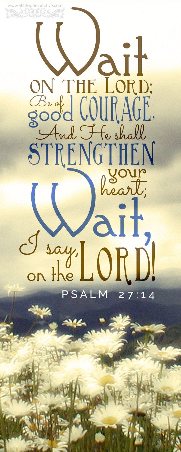 Wait on the Lord, be of good courage, and He shall strengthen your heart; Wait, I say, on the Lord. Psa 27:14 <3