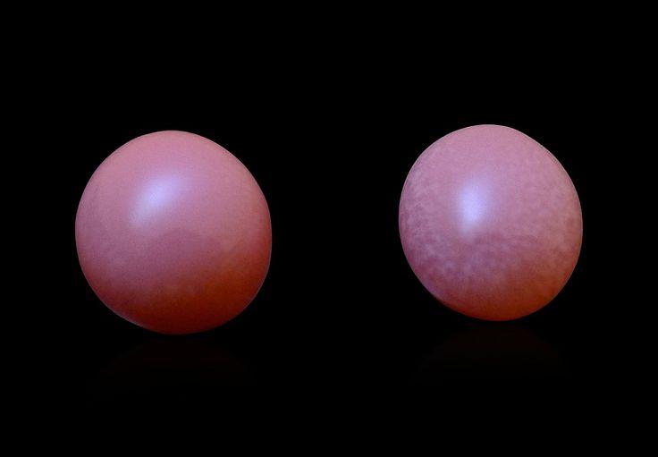 Set of 2 conch pearls by Federico Barlocher