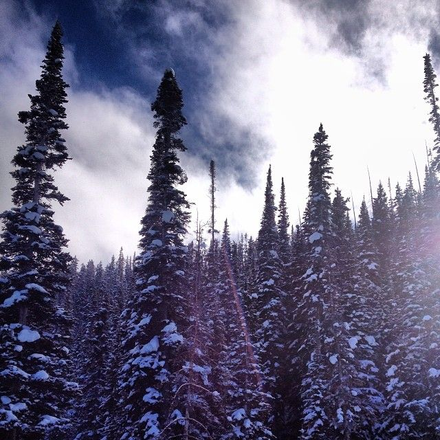 Beaver Creek December 2013