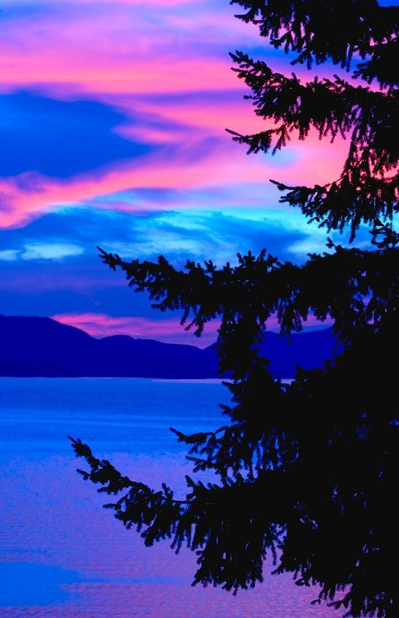 Pink & Blue Sunset