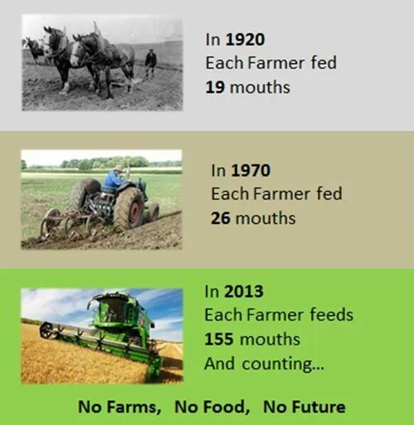 No farms.  No food.  No future.