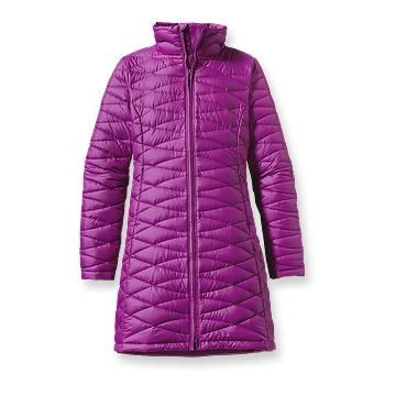 A winter coat: Patagonia Women's Fiona Parka (in black or navy)