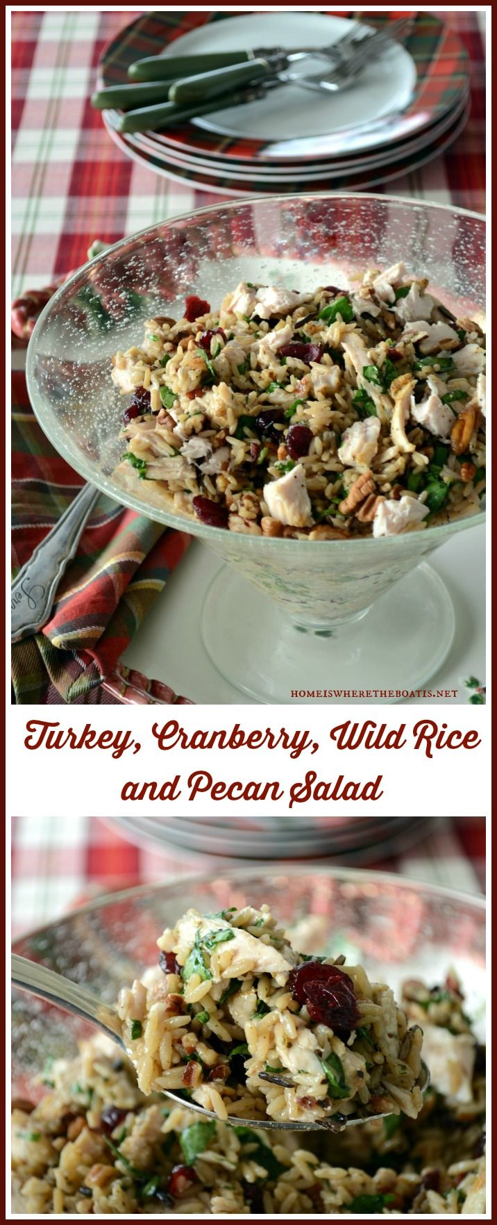 Turkey, Cranberry, Wild Rice and Pecan Salad