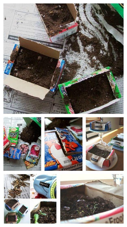 scatola di cartone: contenitori fai da te per coltivare