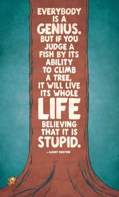 """Everybody is a genius. But if you judge a fish by its ability to climb a tree, it will live its whole life believing that it is stupid."""