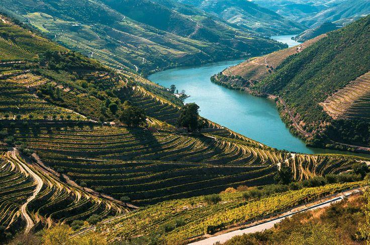 Vinhedos do Douro, Portugal