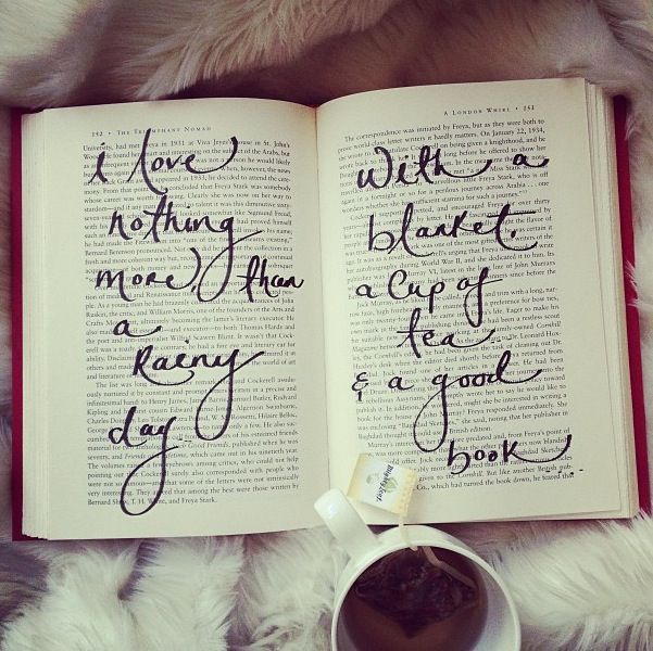 i love nothing more than a rainy day with a blanket, a cup of tea and a good book #bookworm