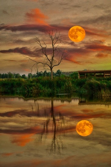 Reflejo de luna