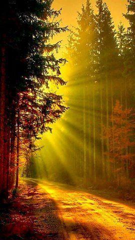 Light Of God