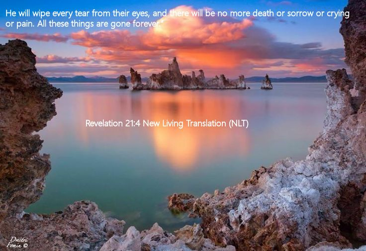 Revelation 21.4 New Living Translation (NLT)