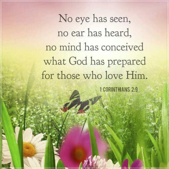 Image result for 1 corinthians 2 9
