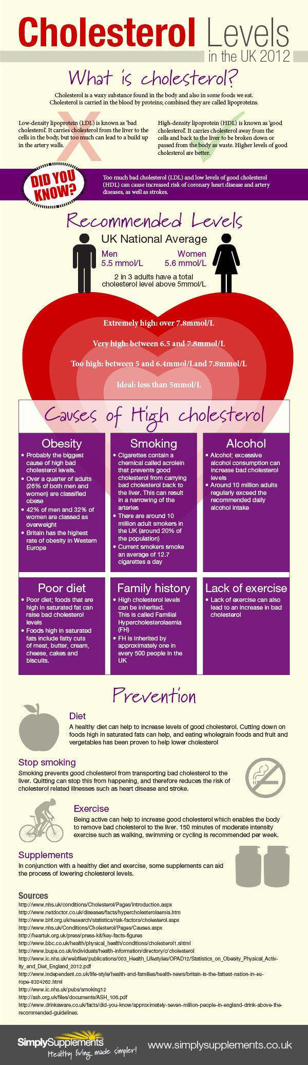 Cholesterol Infographic