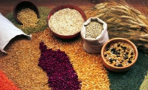 Grains from Clinicalalimentary