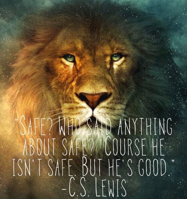 Image result for narnia quotes about aslan