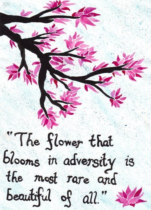 Image result for cherry blossom quotes