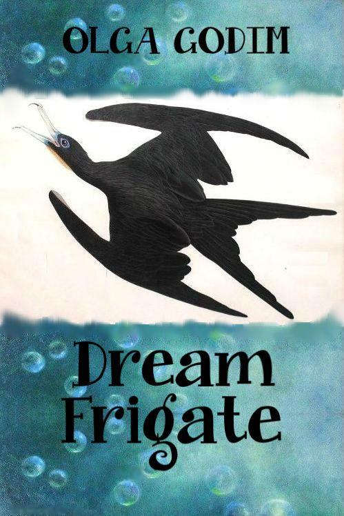 Dream Frigate Cover