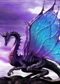 Délicat dragon féérique