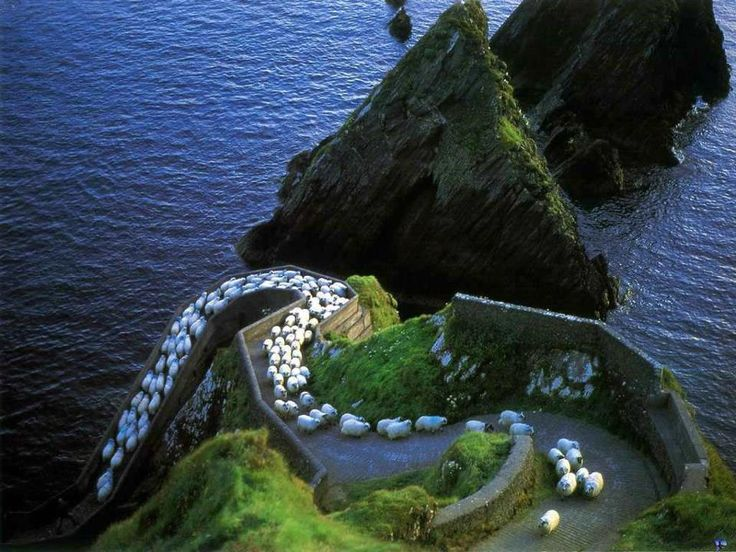 Sheep Highway, Ireland | Most Beautiful Pages
