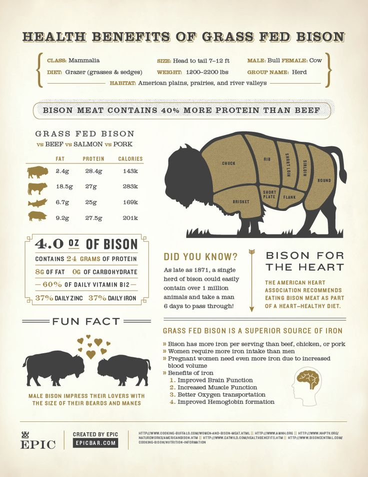 Health Benefits of Grass Fed Bison Infographic by EPIC - Order EPIC bars at holabirdsports.com