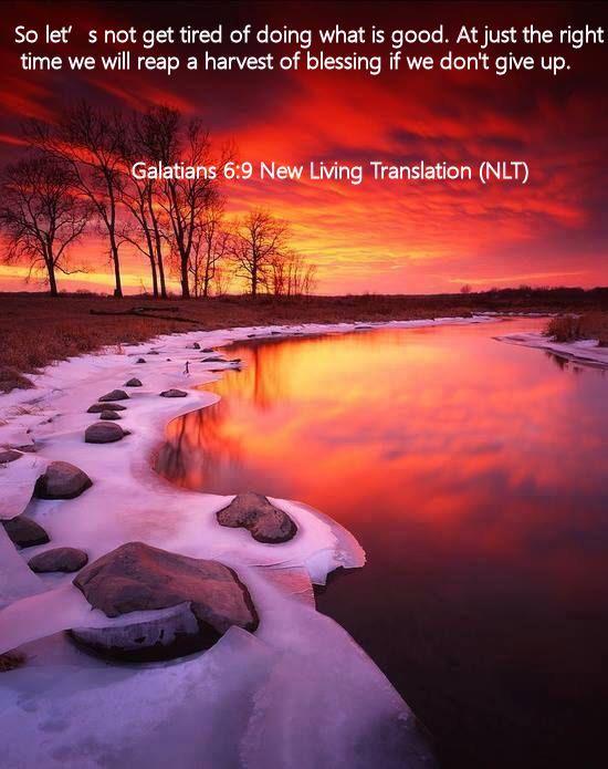 Galatians 6.9 New Living Translation (NLT)