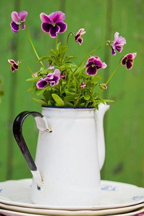 "I did something like this last year with old coffee pots of different shapes and sizes and made a ""bucket garden"" also different shapes and sizes.  Loved the look!"