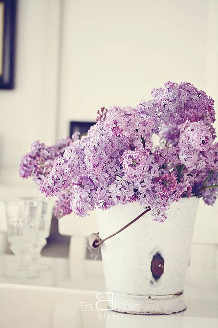 Love putting flower clippings in a bucket! Will try this with my hydrangeas and gardenias for sure.