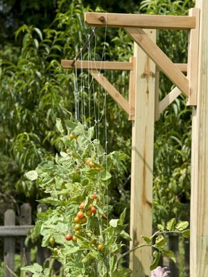 Whether you live in the tiniest studio apartment or the largest homestead or somewhere in between, going vertical with your gardening can help you make the most of the space that you have! // Mom with a PREP