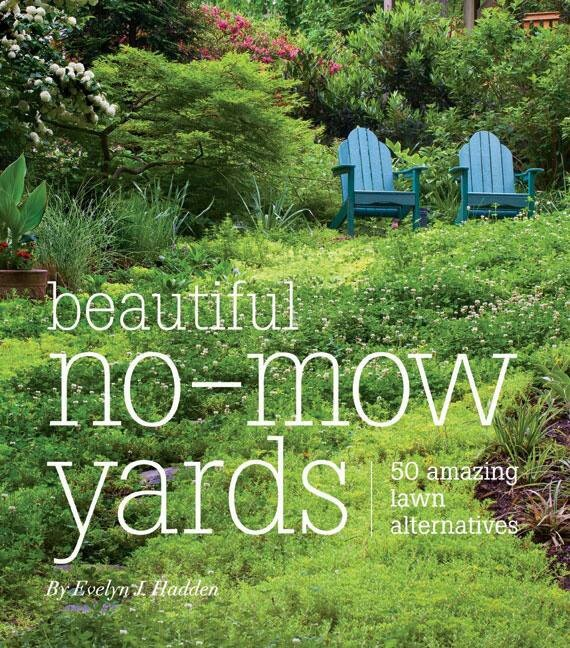 No - Mow Yards lovely | garden ideas | Pinterest on No Mow Backyard Ideas id=63201