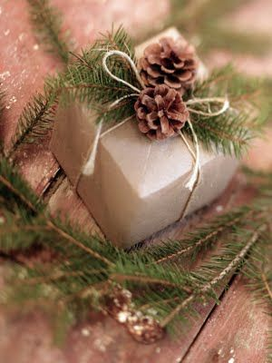 Gift Wrapping Ideas:  For an elegant and natural gift, tie pine cones, small branches and other items from nature on with raffia ribbon. Using brown paper bags with the writing on the inside, tissue paper and other re-purposed papers, will make your gift eco-friendly.
