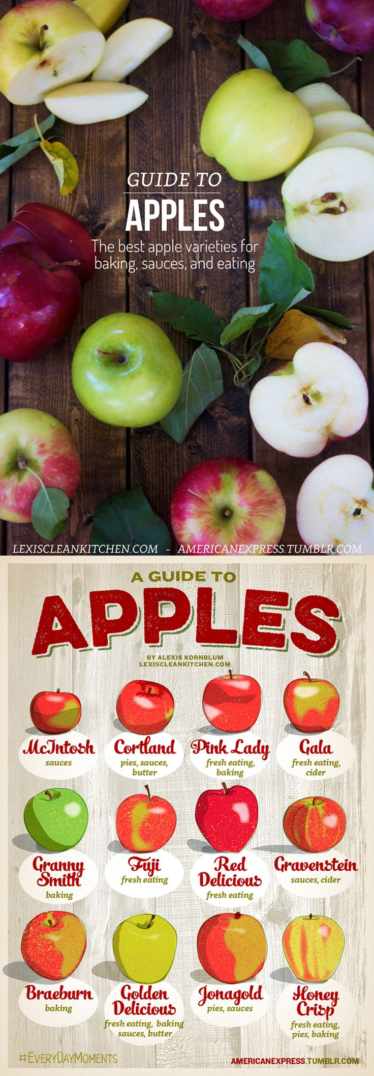 Guide to #APPLES! The best apples for baking, eating, sauces, and apple butter!