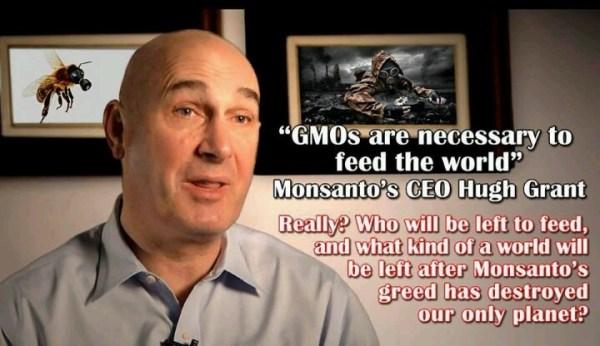 Monsanto Company Ceo | www.imgkid.com - The Image Kid Has It!