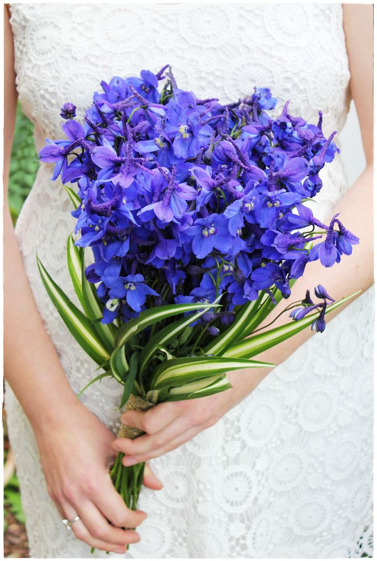 Image result for Delphiniums  bouquet