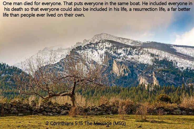 2 Corinthians 5.15 The Message (MSG)