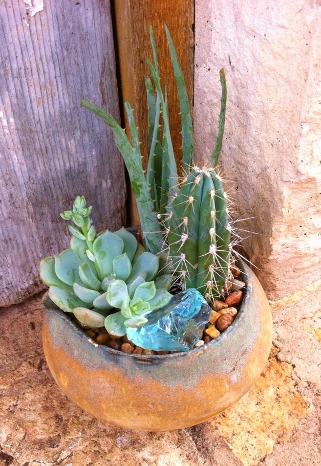 Handmade Pottery Cactus Garden
