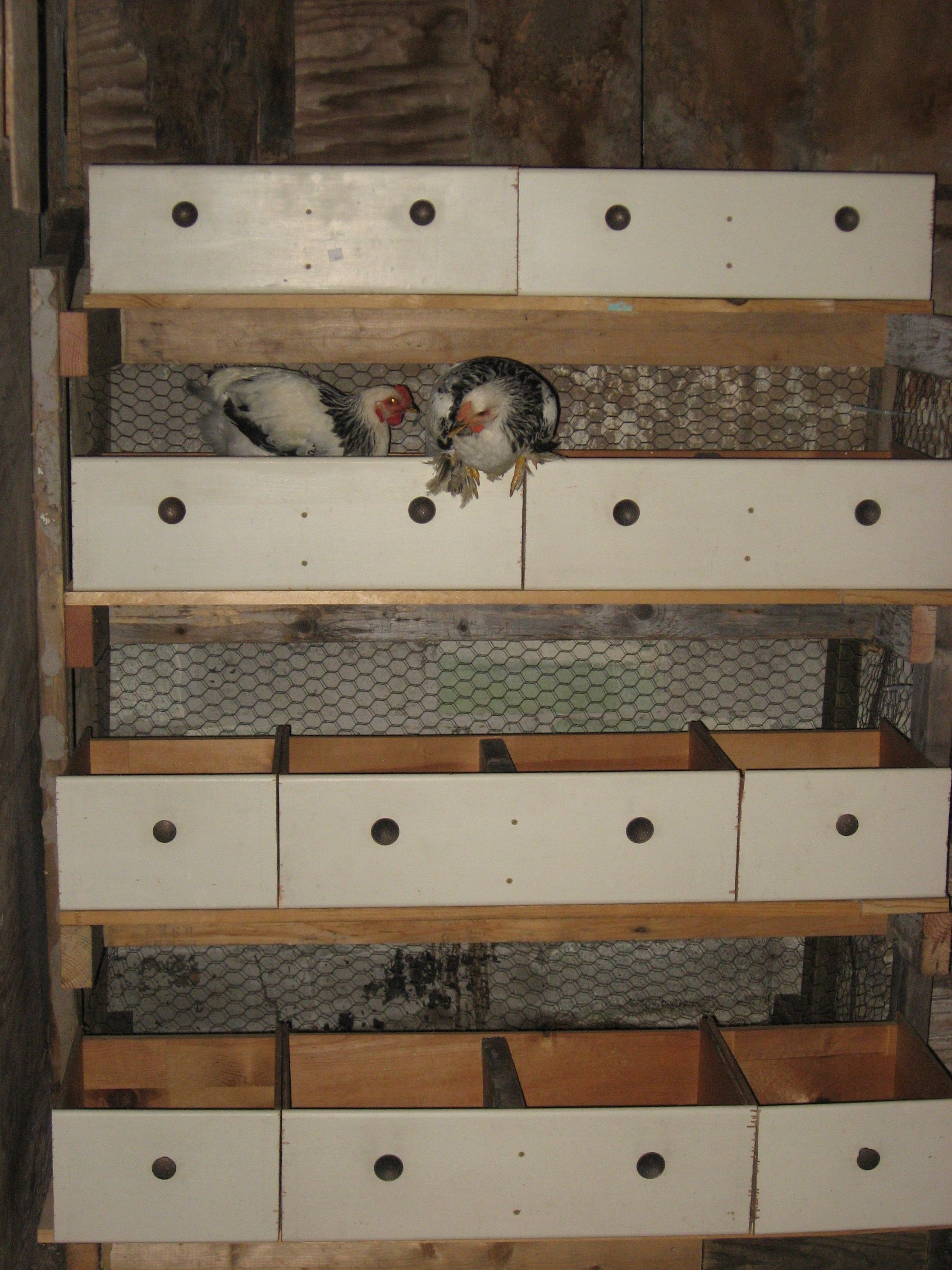 Savvy Housekeeping 187 5 Recycled Chicken Nesting Boxes