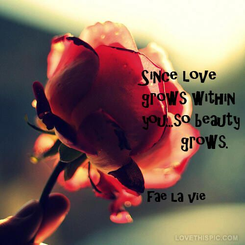 You Are Beautiful Love Quotes