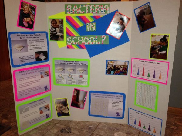 List Of Science Fair Project Ideas Science Buddies   All ...