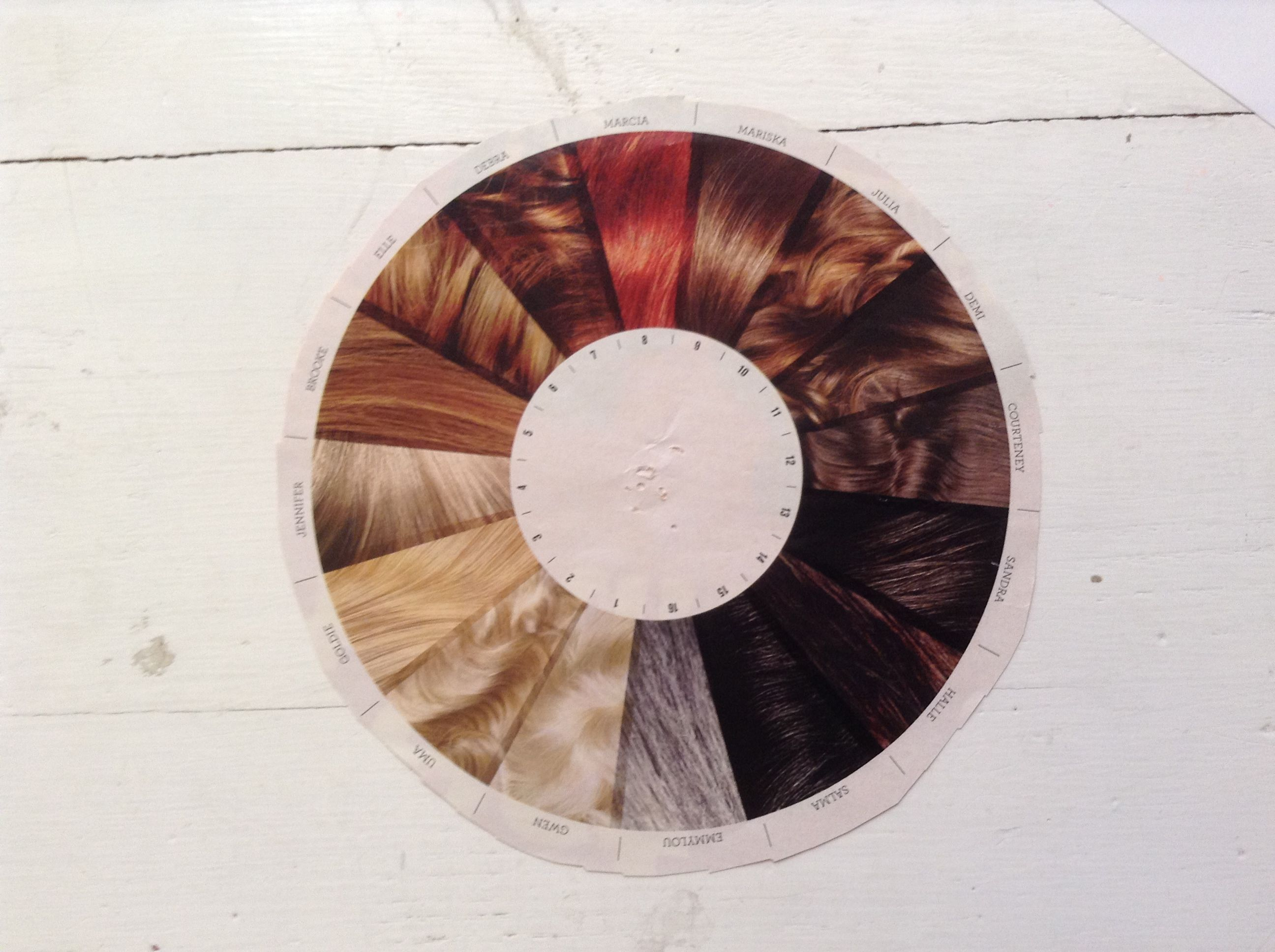 Hair Color Wheel Cool